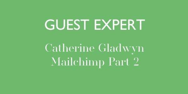 Guest expert training Mailchimp